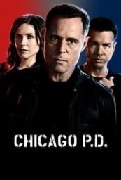 Chicago PD S02E08