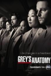 Grey's Anatomy S11E08