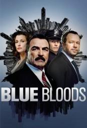 Blue_Bloods_span_HDTV_720p_1080p_span_span_S05E22_span_.jpg