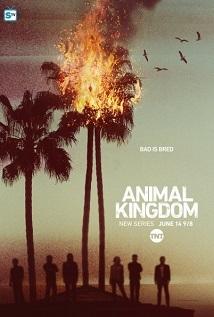 Animal_Kingdom_span_HDTV_720p_1080p_span_span_S01E08_span_.jpg