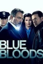 Blue_Bloods_span_HDTV_720p_span_span_S07E11_span_.jpg
