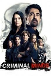 Criminal_Minds_span_HDTV_720p_1080p_span_span_S12E13_span_.jpg
