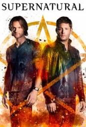 Supernatural_span_HDTV_720p_1080p_span_span_S13E02_span_.jpg